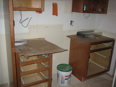 Day 6: An awkward photo moment - the cabinets are caught without their drawers.