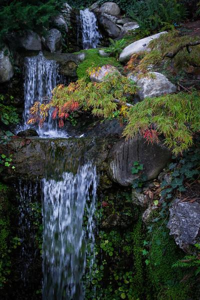 Hakone Falls #1