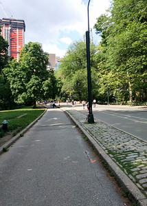 Run in Central Park