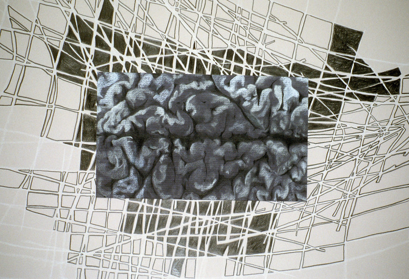 "Ornamental Cortex. Pencil on paper, 13"" x 19,"" 1998."