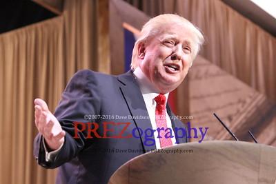 Trump Expressions