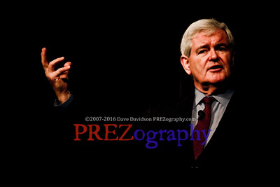 Best of Gingrich by Dave Davidson