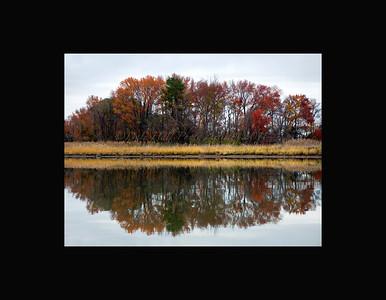 Prices Creek mirror Image