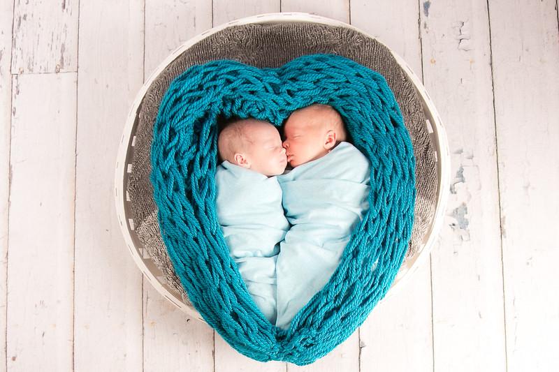 newborn twins family lifestyle loveland colorado