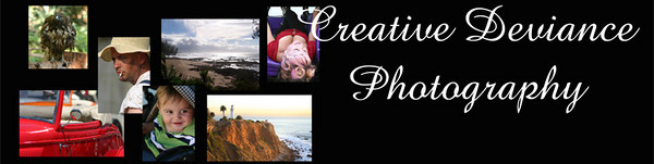 Host a photo-party ~ <br /> <br /> 5-6 family sessions ( round up your friends)<br /> $75 per session - Photo shoots will be 30 minutes. <br /> <br /> *Each family will get 1 8x10 picture.  <br /> <br /> <br /> After photos are taken,  they will be available to view and purchase photos online. <br /> <br /> Are you up for being a host??? <br /> <br /> This is what you have to do<br /> -find 5-6 families <br /> -host or select a location<br /> -schedule appointments <br /> <br /> Host get your shoot on that day for free!!!