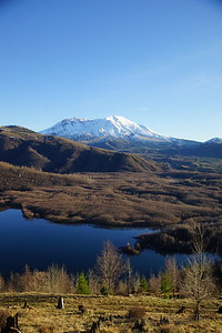 Mt St Helen - Coldwater Lake