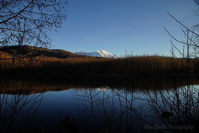 Mt St Helen Coldwater Lake