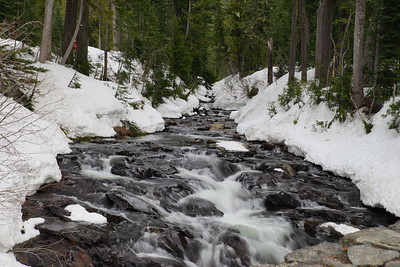 Winter Creek -Mt Rainer National Park