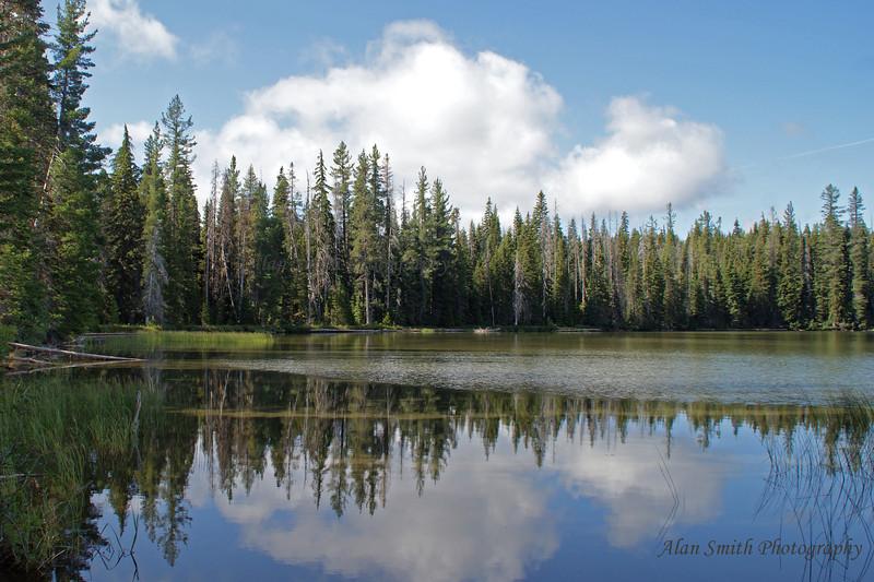 Deer Lake - Central Cascades Oregon-wm