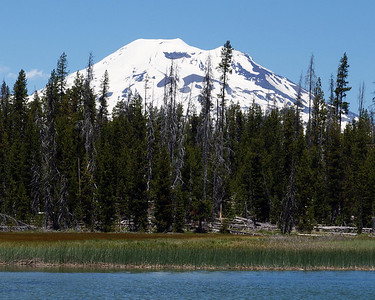 South Sister from Lava Lake