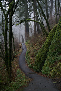 Columbia River Gorge Trail, Oregon