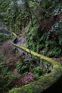 Trail - Sheppard Dell Falls - Col Riv Gorge