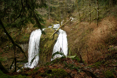 Trapper Creek Falls - Raw converted to JPG