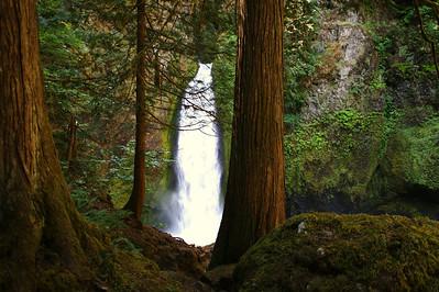 Wahclella Falls - Columbia Riv Gorge (2)