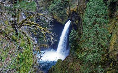 Metlako Falls on the Eagle Creek Trail - Exit 41 off I 84 going east.