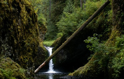 Eagle Creek, Punch Bowl Falls.  The log has since washed away.