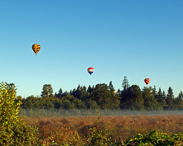 Lifting off from Cook Park in Tigard
