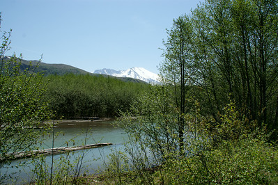 2009 05 25_Mt St Helens_1062