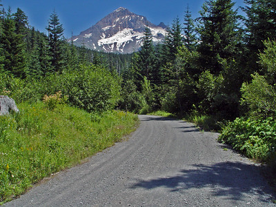 "Mt Hood Oregon Taken from Forest Service Road ???...OK - I was lost...and this picture just said...""take me"""