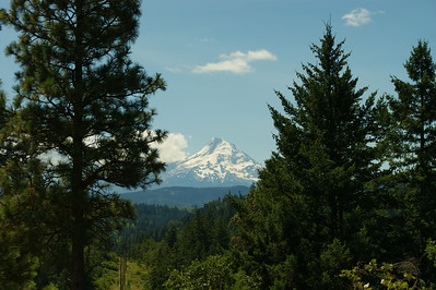 Mt Hood Oregon Taken from Hwy 35 North of Hood River Oregon
