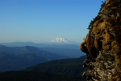 Mt Adams from Larch Mt
