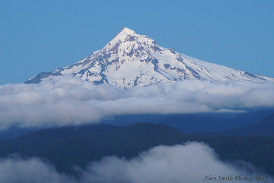 Mt Hood from Larch Mt copy