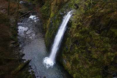 Drift Creek Falls, Oregon Coastal Range.     Taken from the suspense bridge over the creek.