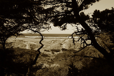 Yaquina Bay Lighthouse trail to beach - Sepia - Newport Or