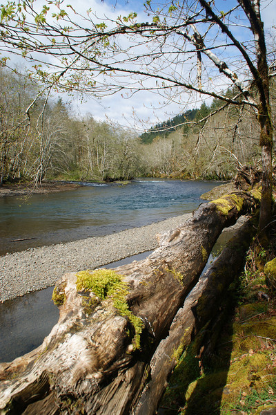 Wilson River, OR