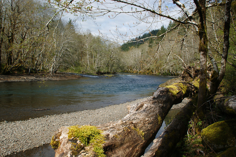 Wilson River, Oregon