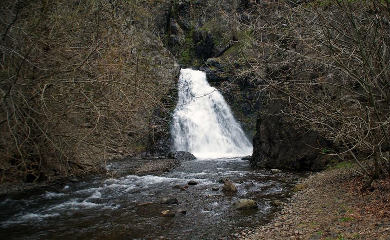 Dog Creek - Washington1