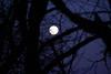 Moon in Columbia River Gorge, Oregon