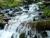 Wahkeena Creek, Columbia River Gorge, OR