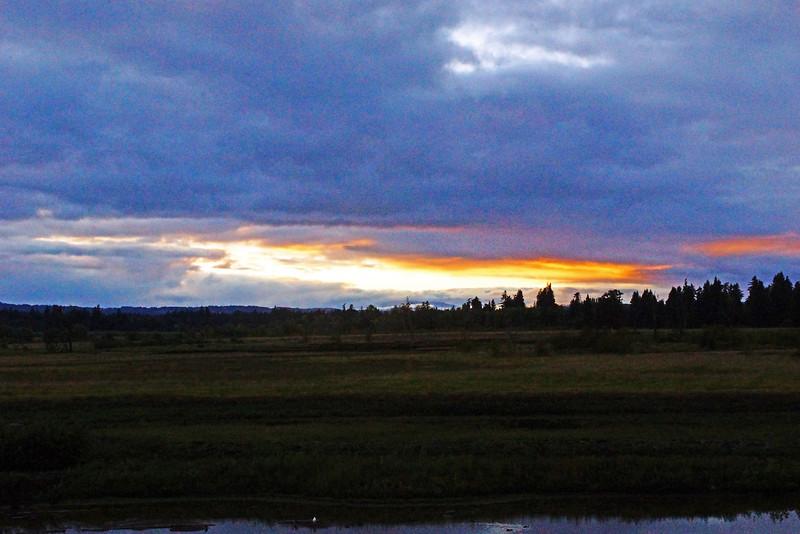 Tualatin Wildlife Refuge - evening