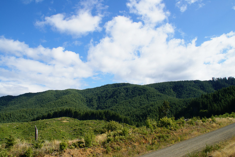 Coastal Range Foothills in Yamhill County