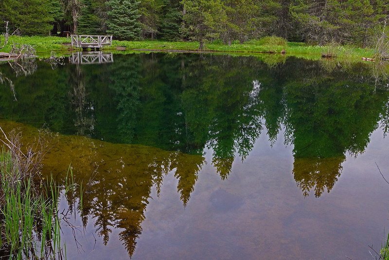 Reflection on Little Crater Lake. Mt Hood Nat Forest ,  OR