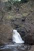 Dog Creek - Washington2