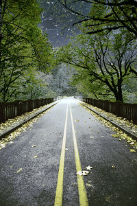 Gorge Bridge 1