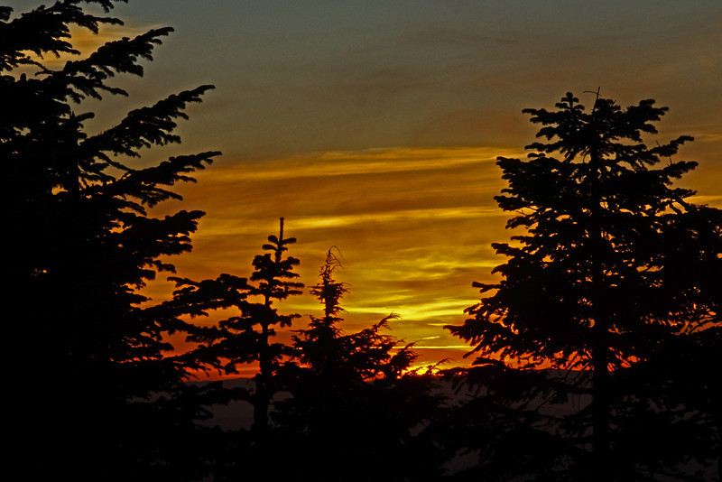 Larch Mt Sunset