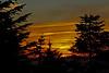 Larch Mt Sunset