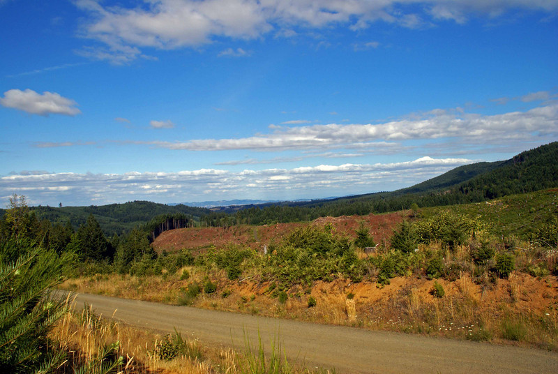 Yamhill County...just a back road with an amazing view.