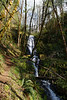 Waterfall from creek flowing into the Wilson River, Hwy 8, Oregon
