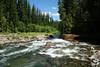 Creek at Raab Campground off of Clackamas River