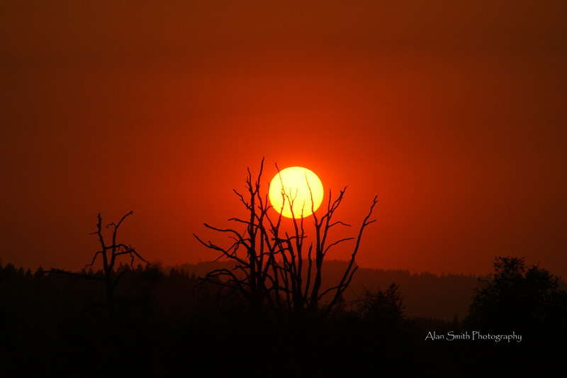 Sunset-TualatinWildLifeRefuge-New1