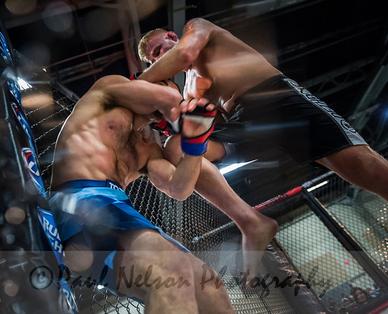 Prime Fights 6 2016