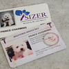Identification for Prince Charming, the Bichon Frise  who can detect seizures before they happen. Prince Charming's owner Lorelei McClure, works at the Sizer School and he goes to work with her. SENTINEL & ENTERPRISE / Ashley Green
