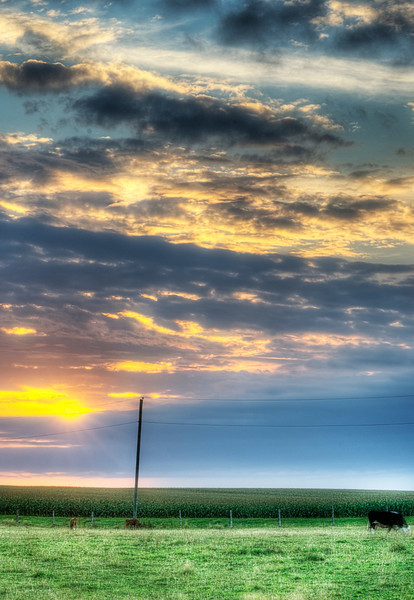 Shot this one 20 August, 2013 near New London, Prince Edward Island.....