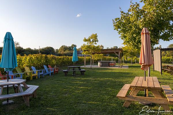 Sandbanks Winery