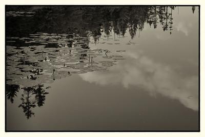 Doc's Marsh: Boughton, PEI