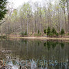 prince william forest park-lg-7